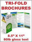 "Brochures - Tri-fold, 8.5"" X 11"" 80lb gloss text Double Sided, full bleed, full color  - From $38"