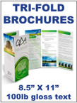 "Brochures - Tri-fold, 8.5"" X 11"", 100lb gloss text Double Sided, full bleed, full color  - From $41"