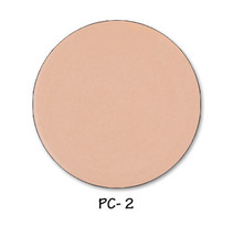 Perfect Concealer Cool PC2