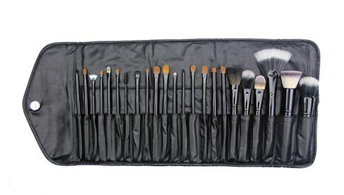 Crown Brush 23pc Professional Set w/ Case