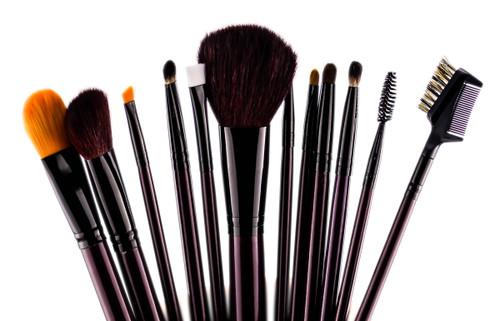 Crown Brush 12pc Designer Brush Set