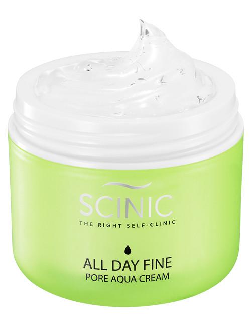 Scinic All Day Fine Pore Aqua Cream