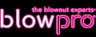 Blow Pro