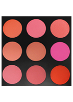 Morphe The Blushed Blush Palette - 9B