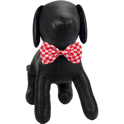 Paul Dog Bow Tie