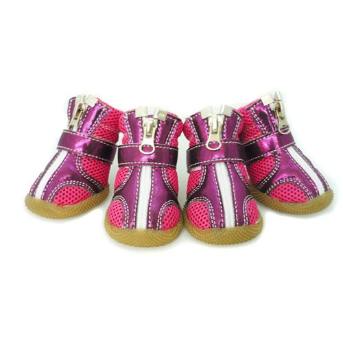 Sporty Dog Boots | Purple & Magenta