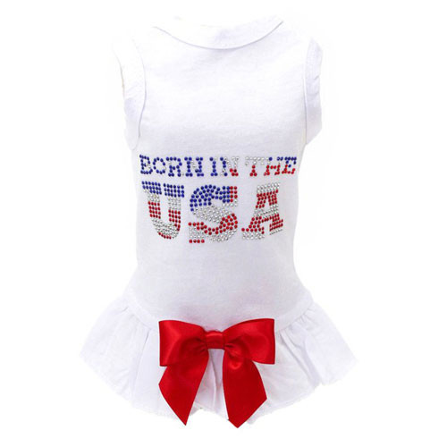 Born in the USA Tank Dress