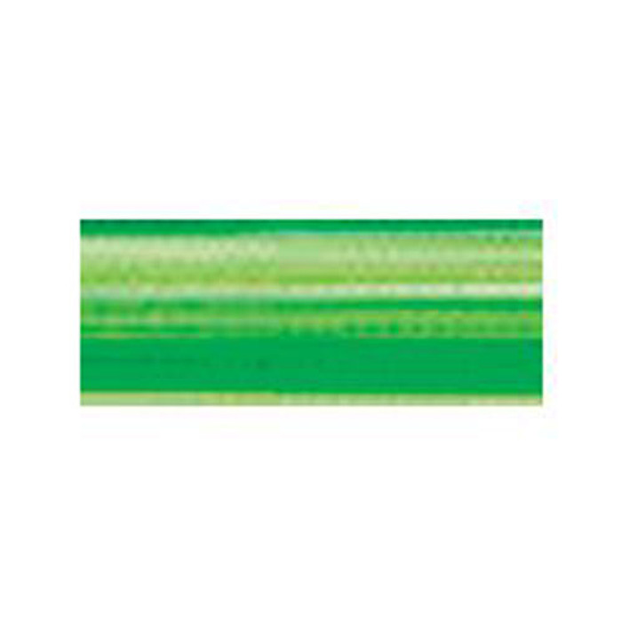 Madeira Rayon Embroidery Thread 40wt 200m - Bright Green Ombre