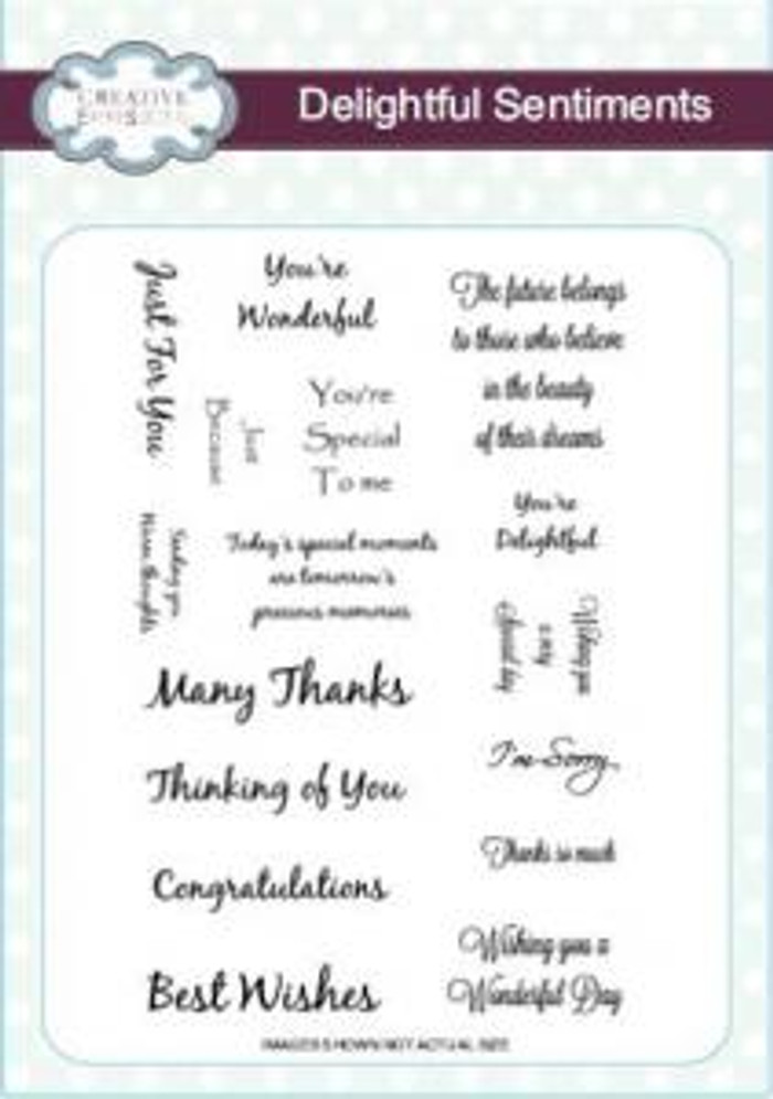 Creative Expressions A5 Unmounted Stamp Plate - Delightful Sentiments CEC703 - Pre-Order 15% Off