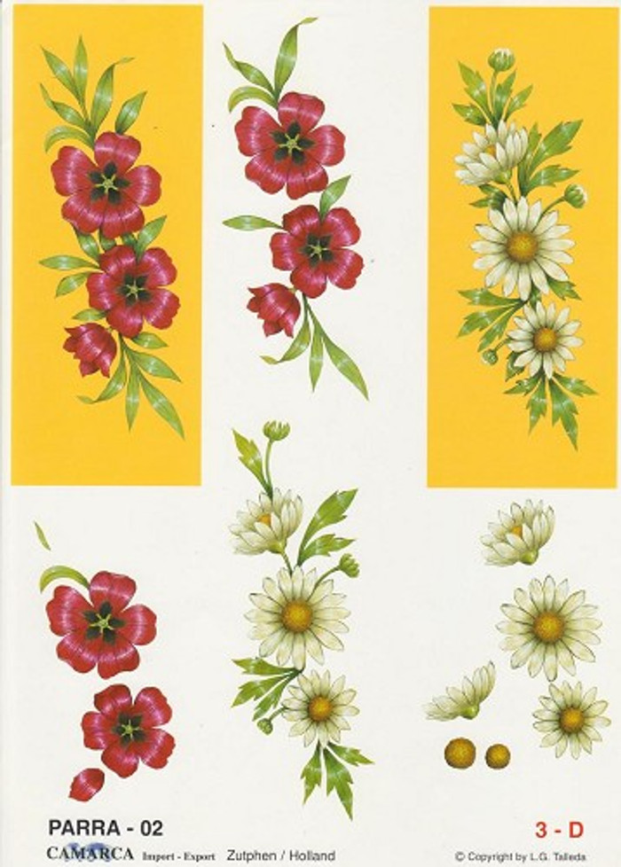 3D Sheet Camarca  - Red Flower and White Daisy  Parra02