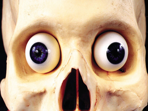 Unbelievably realistic glass eyes can be used for special effects as well as window displays-really makes a mask come to life! Eyes are for display purposes only, and are not wearable. Assorted colors.