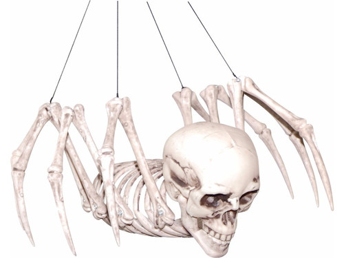 This unusual skeletal spider with human skull will creep anyone who can't stand spiders!   Place him around the floor of your haunt for a little extra atmosphere. Human skull-looking head with spider body. Item size 13.4 x 11 x 6.3 inches. Plastic.