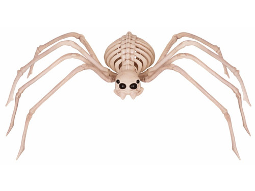 Let this skeleton spider scare them all when you put this on display.  Made of durable plastic form, it has bendable legs and a moveable head. Looks great when placed in spider webs!  33.38 X 9.375 X 4.50 inches