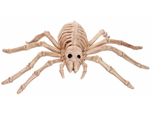 This creepy Skeleton Spider is made of heavy injection plastic and measures 8 inches long.