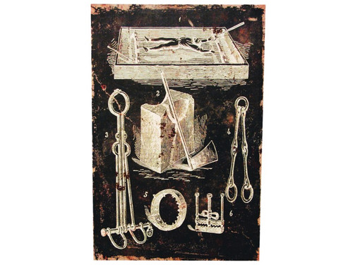 New 2017. Make your next haunted party just a touch more eerie with this canvas print of torture devices! Destressed-look canvas print on a pressed cardboard fame. The frame has a notch in the back for easy hanging. Measures 16 inches by 24 inches and 3/4 of an inch deep.