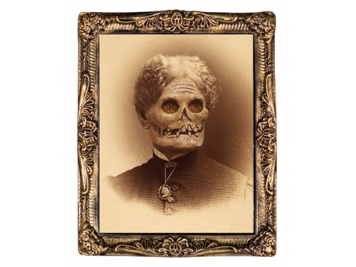 These Haunted Family Portraits are a must have for your next Halloween party or haunt. Each family member (s) is a holographic portrait, of a sweet loving mother, father, daughter or toddlers which change faces into a rotted corpse as you walk by. Portraits measures 17 inches x 21 inches with a molded plastic frame. You and your guests won't believe your eyes!