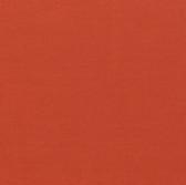 Painter's Palette Solids - Paprika