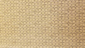 Blank Quilting- Good Doggie- Circle Texture Bown