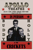 Buddy Holly 12 X 18 POSTERS