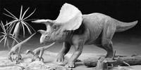 Triceratops Diorama 1/35 Tamiya