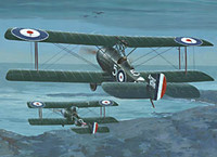 Sopwith 1 1/2 Strutter Comic Fighter 1/48 Roden