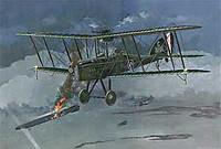 RAF B.E.12b 1/48 Roden