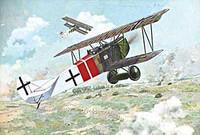 Fokker D.VII Alb (Late) 1/48 Roden