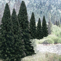 "Ready Made Trees Value Pack- 2"" - 4"" Evergreen (18)"