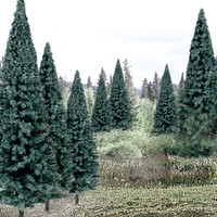 "Ready Made Trees Value Pack 4"" - 6"" Blue Spruce (13)"