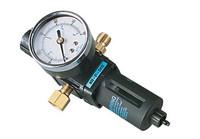 Air Regulator, Filter & Gauge Badger