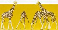 Giraffes (4) N Preiser Models