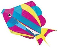 "29""x 18"" Rainbow Fish 3-D Nylon Kite Gayla"