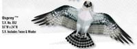 "55""x 24"" Osprey Bird Wing Flapper Kite Gayla"