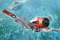 T-28C Trojan USN Trainer Aircraft 1/48 Roden