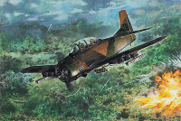 T-28D Trojan USAF Trainer Aircraft 1/48 Roden