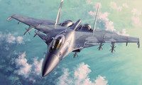Sukhoi Su-33 Flanker D Russian Fighter 1/72 Trumpeter