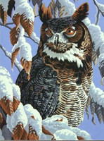 "Winter Watch (Owl in Tree Snow Scene) Paint by Number (11""x14"") Dimensions Paint by Number"