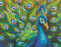 """Wild Feathers (Peacock) Paint by Number (14""""x11"""") Dimensions Paint by Number"""