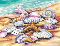 "Shells (Seashore) Paint by Number (11""x14"") Dimensions Paint by Number"