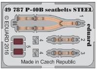 Seatbelts P-40B Steel for ARX (Painted) 1/48 Eduard