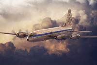 Bristol 175 Britannia African Safari Airliner 1/144 Roden