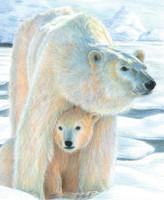 "Polar Love (Bear w/Cub) Pencil by Number Age 8+ (8.75""x11.75"") Royal & Langnickel"