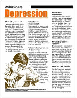 Understanding and Treating Depression PowerPoint, Training, DVD, Video