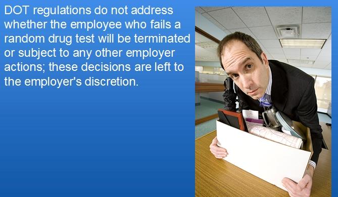 drug-testing-regulations.jpg