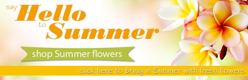 summer2015-medium-1.jpg