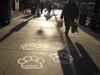 Floor Decals - PathFinders Sidewalk Stickers - Paw Prints