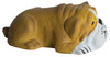 Bull Dog Lying Down Squeezies Stress Relievers - Side