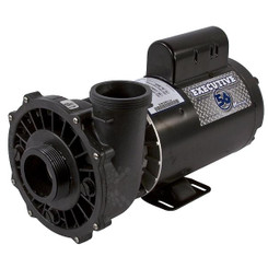 "Pump, Waterway Executive 56, 5.0HP, 230V, 2-Speed, 2-1/2"" x 2""MBT, SD, 56-Frame (3722021-13)"