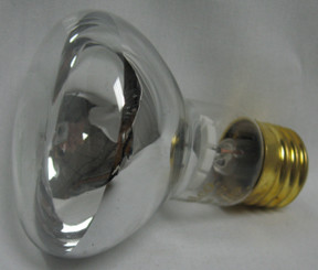 100 Watt Spa Light Replacement Bulb, 12 V