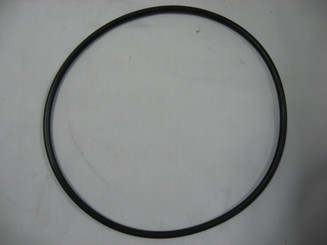 O- Ring for Rainbow HC Chlorinator Lid (R172240)